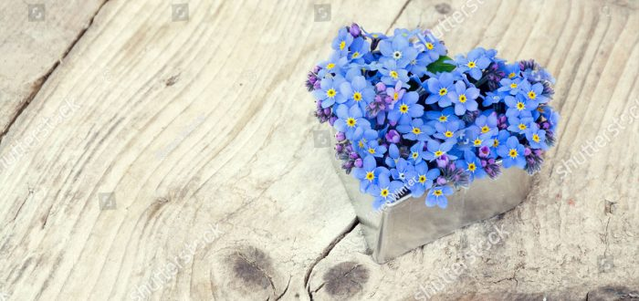 forget-me-not-gift-in-will